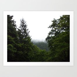 Forest Fog Art Print