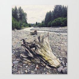 Stoney Creek Driftwood Canvas Print