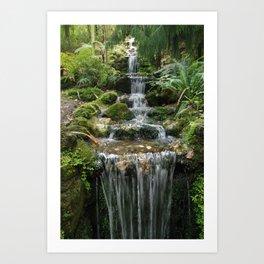 Waterfall Napier botanic gardens Art Print