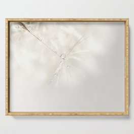 Sparkling dandelion seed head with droplet Serving Tray