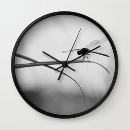 Insect Photography | Dragon Fly | Black and White Photography Wall Clock