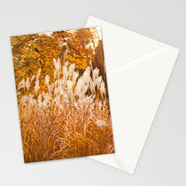 Miscanthus ornamental grass grow Stationery Cards