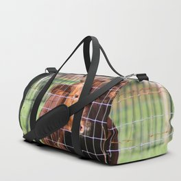 Cow Beyond the Fence Duffle Bag
