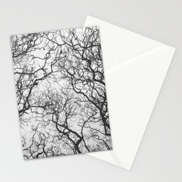 #249 #SleepingTrees Stationery Cards