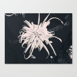 The Veggy Flower Canvas Print
