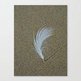 Sand Surfer Canvas Print