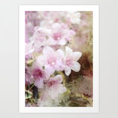 Floral Pink Art Print