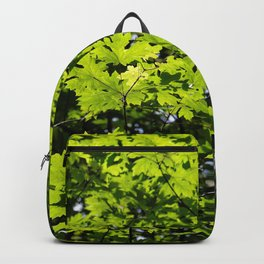 Sun-Dappled Forest in the Spring Backpack