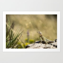 Lizard At Attention Art Print