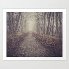 toward the unknown Art Print