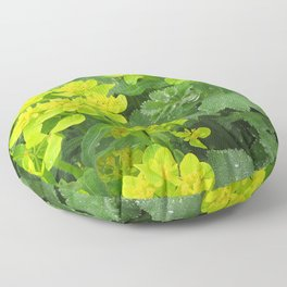 Euphorbia & Lady's Mantle Floor Pillow