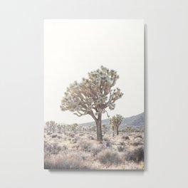 Joshua Light Metal Print