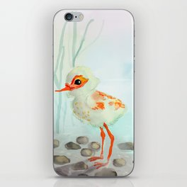 Cute Little Wading Bird in the Misty Sunset iPhone Skin