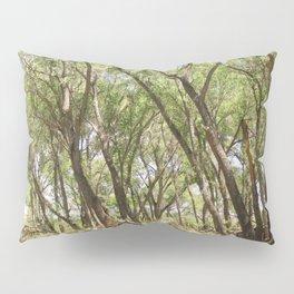 San Pedro River Bank Pillow Sham