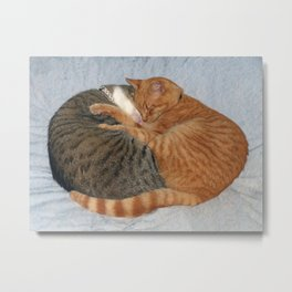 Ball of Cuteness Metal Print