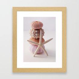 Sea Urchin and Starfish Framed Art Print