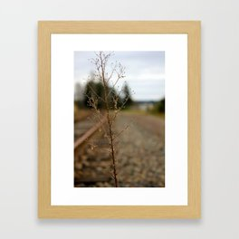 Tracks Framed Art Print