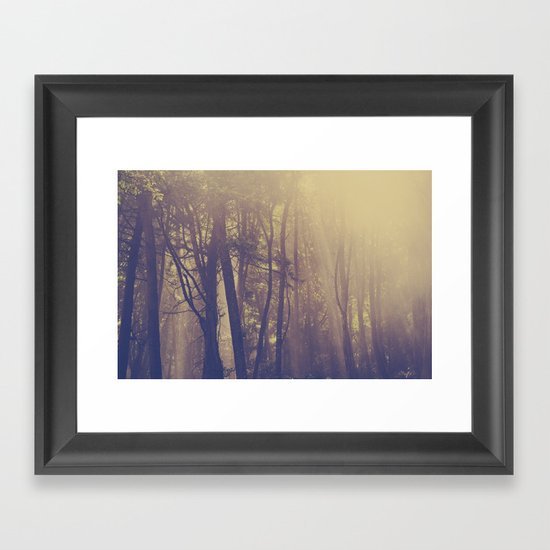 Sunbeams in the Forest Framed Art Print