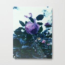 Enchantment  Metal Print