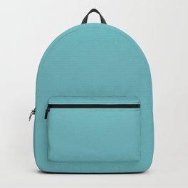 Solid Pale Blue Hosta Color Backpack