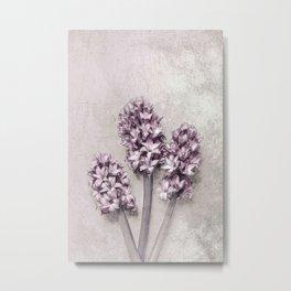 Delicate Hyacinths Metal Print