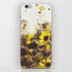 Wild Sunflowers iPhone & iPod Skin