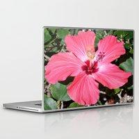 florida Laptop & iPad Skins featuring FLORIDA by Manuel Estrela 113 Art Miami