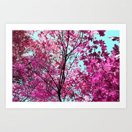Autumn Pink Art Print