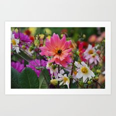 Flowering meadow Art Print