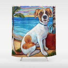 Beach Dog in Aruba Shower Curtain