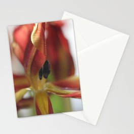 Tulip - final stages Stationery Cards