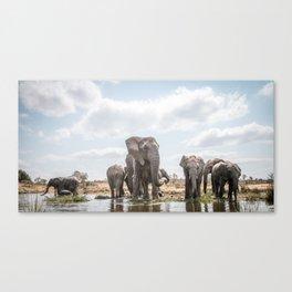 Drinking Elephant herd Canvas Print