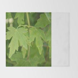 Amber Orientalis Leaves Throw Blanket
