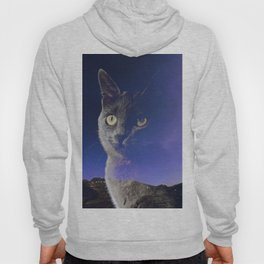 Cat and night sky Hoody