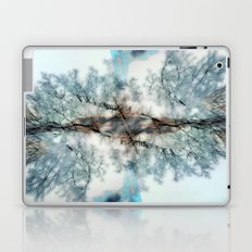 Frost Laptop & iPad Skin