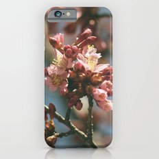 These Violent Delights iPhone 6s Slim Case