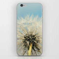 A Better Way to Fly iPhone & iPod Skin