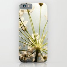 Botanical Explosion iPhone 6s Slim Case