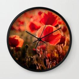 Fiery poppy field - Red Poppies Flowers Wall Clock