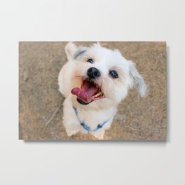 Happy Metal Print