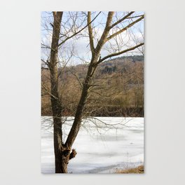 Frozen in Time (color) Canvas Print