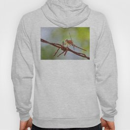 Nature in pastel shades Hoody