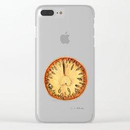 Aegle Marmelos Clear iPhone Case