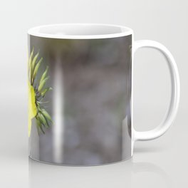 Longwood Gardens - Spring Series 222 Coffee Mug
