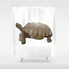 Sulcata Tortoise (side view) Shower Curtain