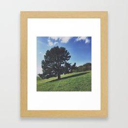 TreefLife Framed Art Print