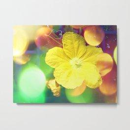 Secret Garden | Cucumber flower Metal Print