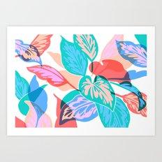 Colorful Pothos Plant Art Print