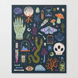 Curiosities Canvas Print