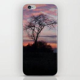 A Buck At Sunset iPhone Skin
